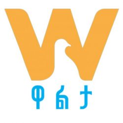 Walta Info logo